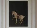 29-cavallo